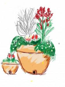 赤い花の鉢植え_デッサン